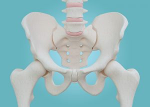 Sacroiliitis Causes Symptoms Treatment And Exercise Tips