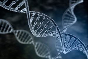 Diabetes-linked-to-DNA-Study