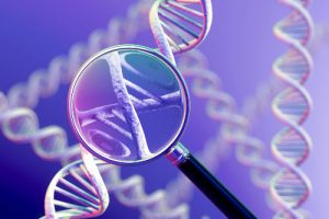 genetic relationship found between schizophrenia and rheumatoid arthritis