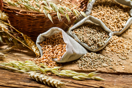 Whole grains may increase metabolism and calorie loss