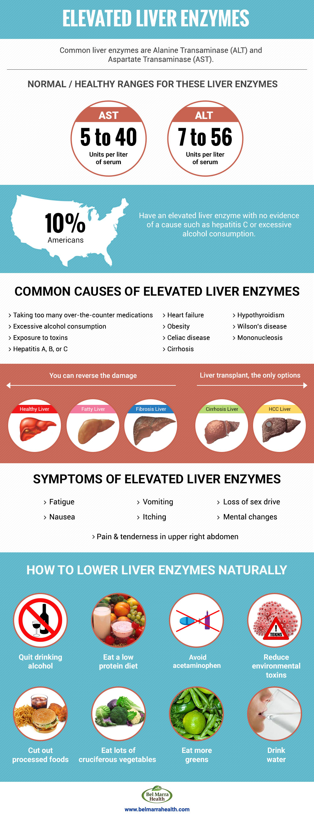What are high liver enzymes?