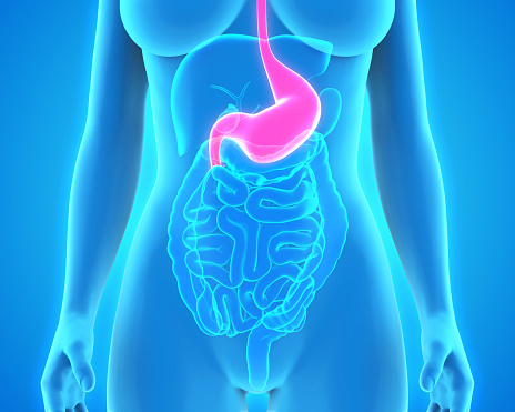 Bile reflux: Home and herbal remedies