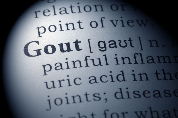 sudden ankle pain gout treatment for gout zinc gout treatment painkillers