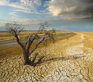 climate change drought senior