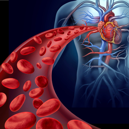7 steps to better blood circulation