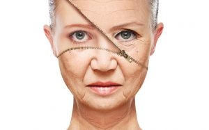 Peptide use shown to reverse signs of aging in rodent studies