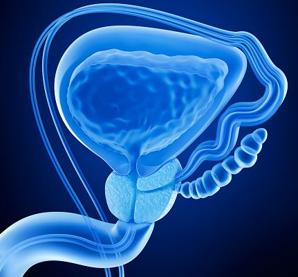 Prostate inflammation (prostatitis): Causes, symptoms, and treatment