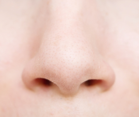 noses helping us survive