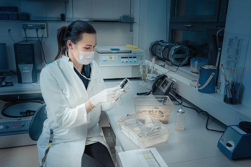 stem cells treat menopause