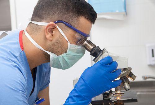 combat cancer stem cells