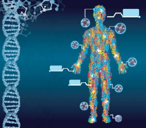 dna damaging effects