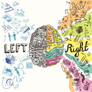 Are left-handers more intelligent than right-handers?