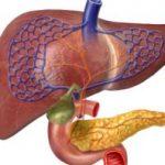Non-alcoholic fatty liver disease