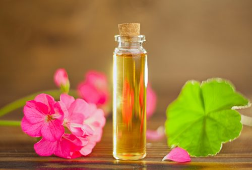 10 best essential oils for high cholesterol reduction