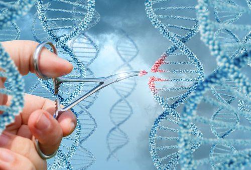 the future of gene editing