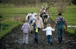 farm life allergies