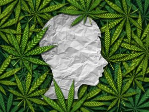 an analysis of the negative experiences of marijuana and the harmful drug use in life With the growing movement to legalize marijuana for medical purposes, the drug has become increasingly accessible, and its use has become more widely accepted its use is particularly common among young adults, with a high percentage endorsing use.