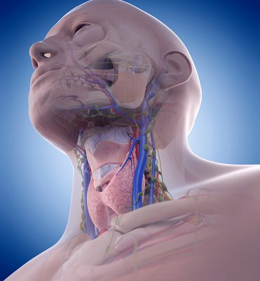 Jugular Vein Distention: Symptoms, Causes, Complications and Treatment