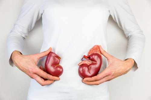 National Kidney Month Atrophic Kidney Kidney Pain In The Morning Enlarged Kidney Kidney Cleanse