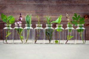 essential oils Tendonitis