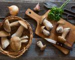 mushrooms anti aging