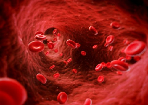 polymyalgia rheumatica giant cell arteritis