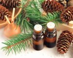 seed oils
