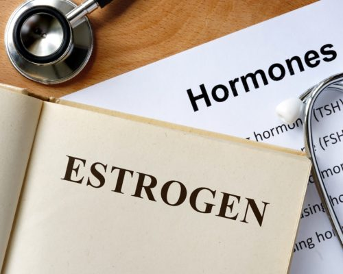 estrogen bone density