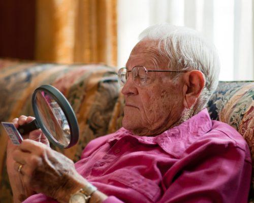 Antioxidants help improve vision