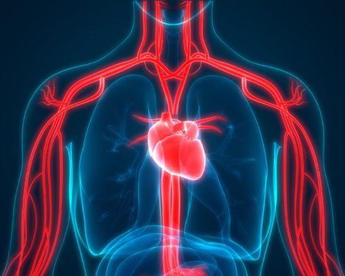 blood circulation signs