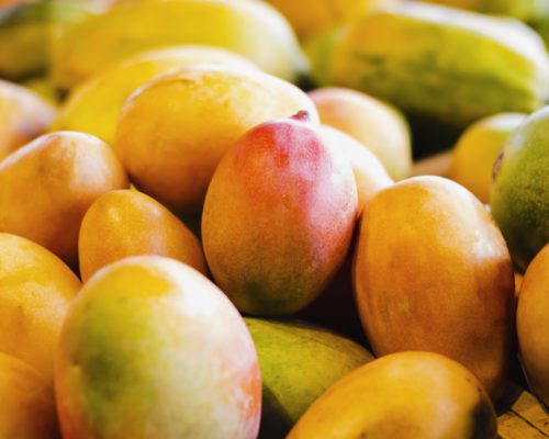 The mango is a citrus fruit that grows in the Intertropical Zone and is fleshy and sweet pulp. It stands out among its main characteristics its good taste and variety.