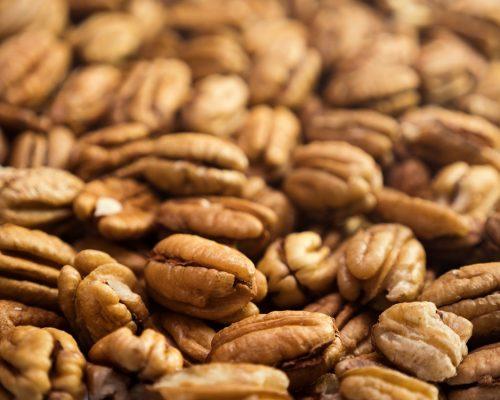 Pecan nuts background. Closeup pekan seeds. Nobody