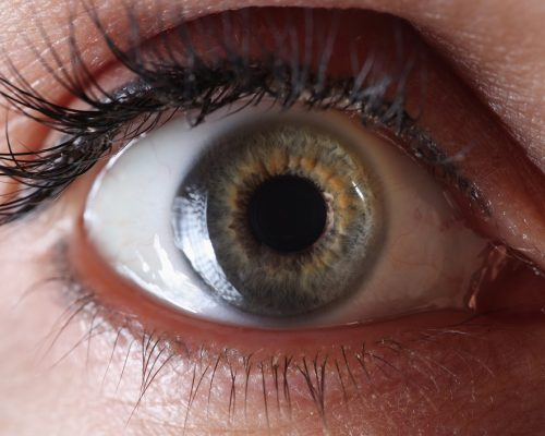 Female eye with permanent eyelid makeup. Research of the organ of vision concept
