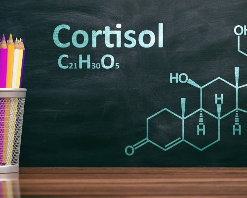 Cortisol structural chemical formula, Chalk drawing on a blackboard. Steroid hormone, stress metabolism. 3d illustration